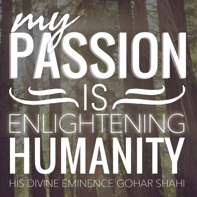 Quote from HDE Gohar Shahi - My Passion is..